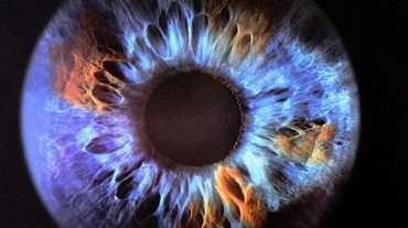 closeup-olfaktivestudio5eye22
