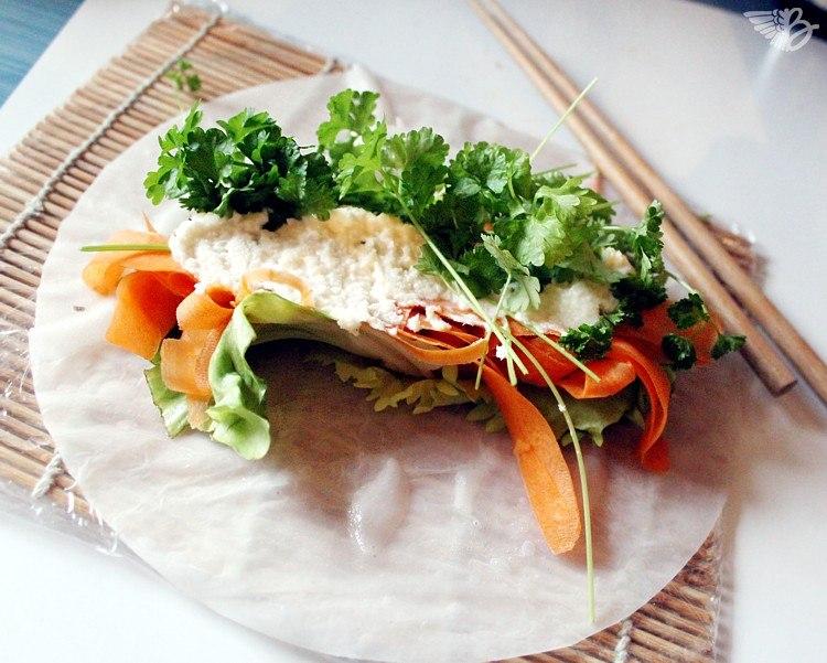 schwushi-sushi-sommerrollen-zutaten-vegetarisch
