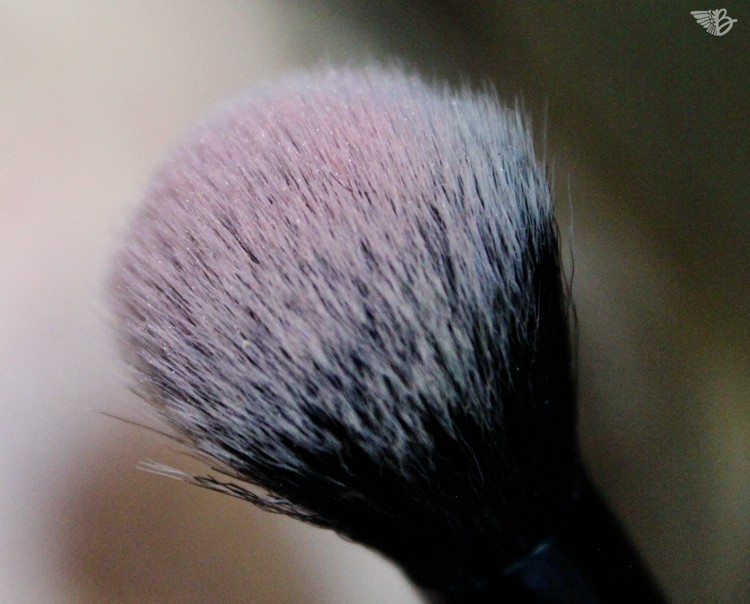 rouge blush brush