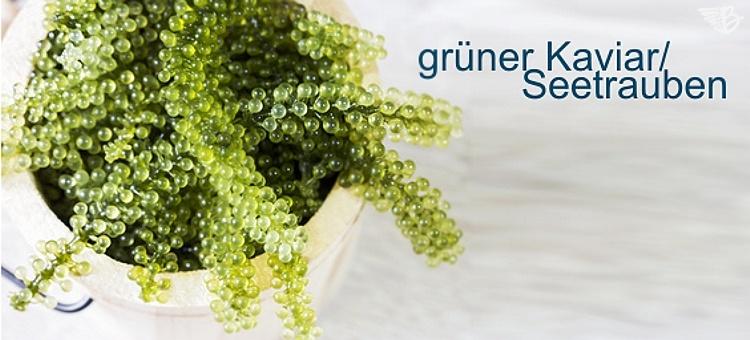 grüner kaviar