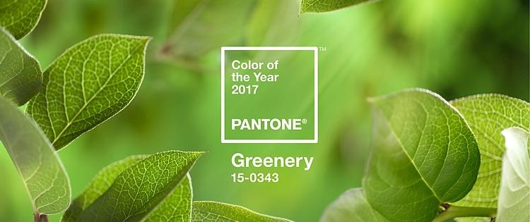 Trendfarbe 2017 Pantone greenery